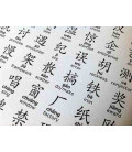 The First 1000 Poster (The 1000 most frequently Chinese Characters pinyin and English definitions)