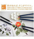 Akashiya Watercolor Brush Pen Sai 5 Colors Set (Spring)