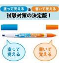 Pen for memorization Kokuyo (Bright color - Bleu/Orange) - Marqueur seulement (filtre non inclus)